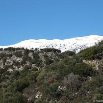 Schneegrenze auf 900 Metern