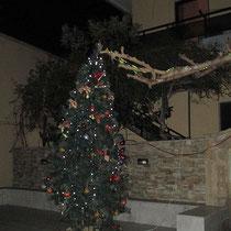 Der Weihnachtsbaum in Zaros