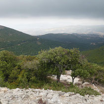 Blick zur Küste bei Nea Styra