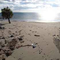 Am Vatalos-Strand