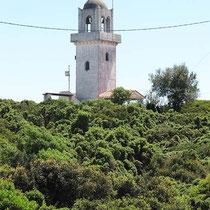 Der Turm wächst aus dem Grünen