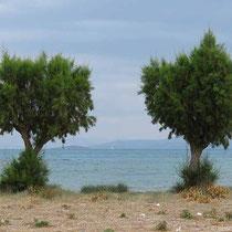Strand bei Skala