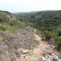 Unser Wanderweg, vorne ganz klein die Ruinen von Paleochora