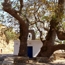 Andros: Im Hinterland von Gavrio