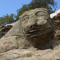 Kea: Der Löwe
