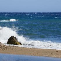 Wellen hat es auch