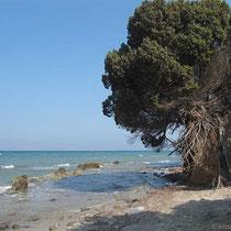 Kein schöner Strand