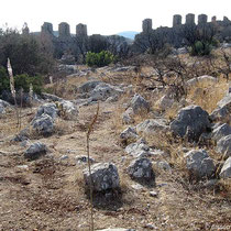 In der Festungsruine