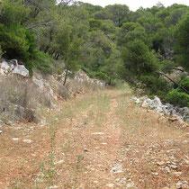 Feld- und Wanderweg