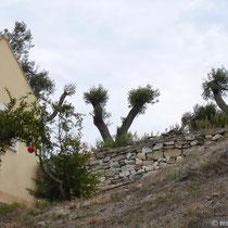 Landhaus toskanisch