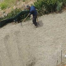 ...beim Gärtnern