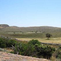 Feld hinter dem Kloster