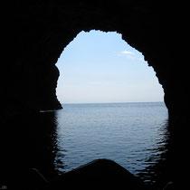 In der Höhle des Meeresochsen