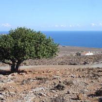 Kreta: Bei Komitades
