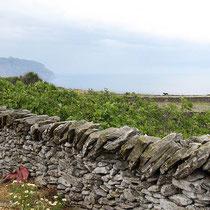 Trockenmauern grenzen die Felder ab