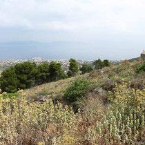 Aegina-Stadt