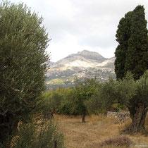 Bergkuppe