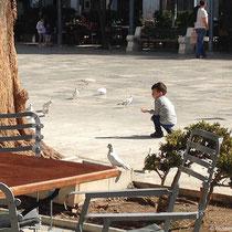 Tauben auf dem Platz