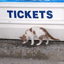Nein, Tickets gibt es erst wieder morgen....