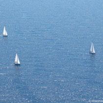 Die weiße Flotte