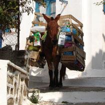 Kythnos: Müllabfuhr in Driopis