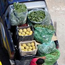 Sitia: Melonen und Grünzeug