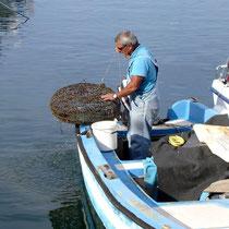 Kreta: Fischer im Hafen von Chania
