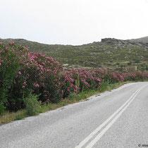 Straße hinter Kato Klisma