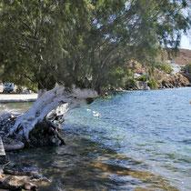 Am Strand von Agios Stefanos