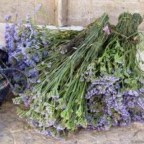 Blumen für Maikranz