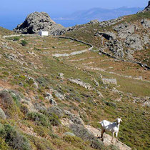 Der weiße Würfel von Agios Georgios