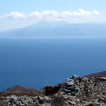 Blick nach Chios