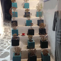 Dekoratives in Naoussa
