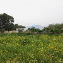 Hinterland von Mastichari