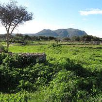 Der Tafelberg des Zourva