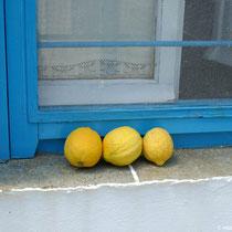 Stilleben mit drei Zitronen