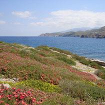 Naxos: Am Tempeltor