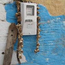 Skordogeschmückter Stromzähler -gegen Blutsauger