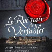 Calligraphie texturée pour le titre d'une série de romans historiques chez Flammarion