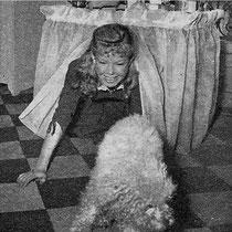 Le caniche nain blanc Satin est un des premiers achats faits avec l'argent gagné. La coiffeuse est l'oeuvre de Cécile Aubry.