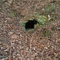 Eingang zur Grube