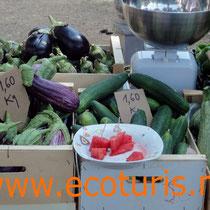 Parada d'ecoturis al mercat ecològic de Godella