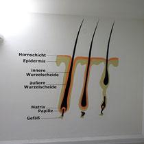 Kosmetikpraxisgestaltung in Berlin Innenraumdesign umgesetzt mit der Graffitidose und dem Pinsel auf Innenraumwand