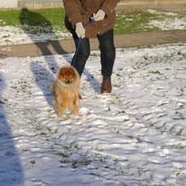 oh, wie toll ist das denn: Schnee !