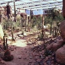 Arizona-Wüste in entsprechend riesiger Halle im Burger's Zoo, NL