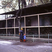 Zoo St. Petersburg 1983