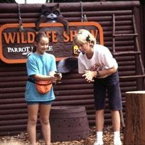 Und das ist eine Show im Parrot Jungle (Florida USA) mit einem hervorragenden, jugendlichen Präsentator, der nicht nur die älteren, sondern vor allem auch die jüngeren Zoobesucher ansprach (hier  demonstriert er, dass eine Kröte nicht gefählich ist).