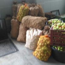Obst- und Gartenbauverein: Apfelannahme und Keltern - Vereinshalle Bad Sobernheim 2015