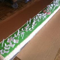 Gemeinschaftsprojekt mit meinem Vater er die Torte ich die Deko
