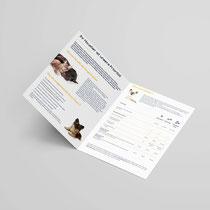 Design Imagebroschüre mit neuer CI